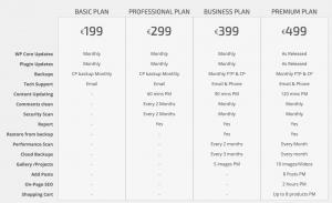 Web Management Plans